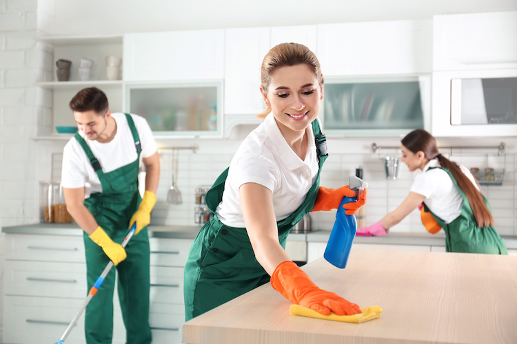 Pros and Cons of Cleaning Services